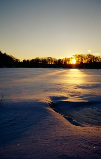 Stock Photo: 655-1141A Frozen lake at sunset, Promised Land Lake, Promised Land State Park, Pennsylvania, USA