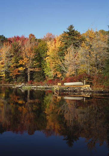 Reflection of trees in water, Promised Land Lake, Promised Land State Park, Pike County, Pennsylvania, USA : Stock Photo