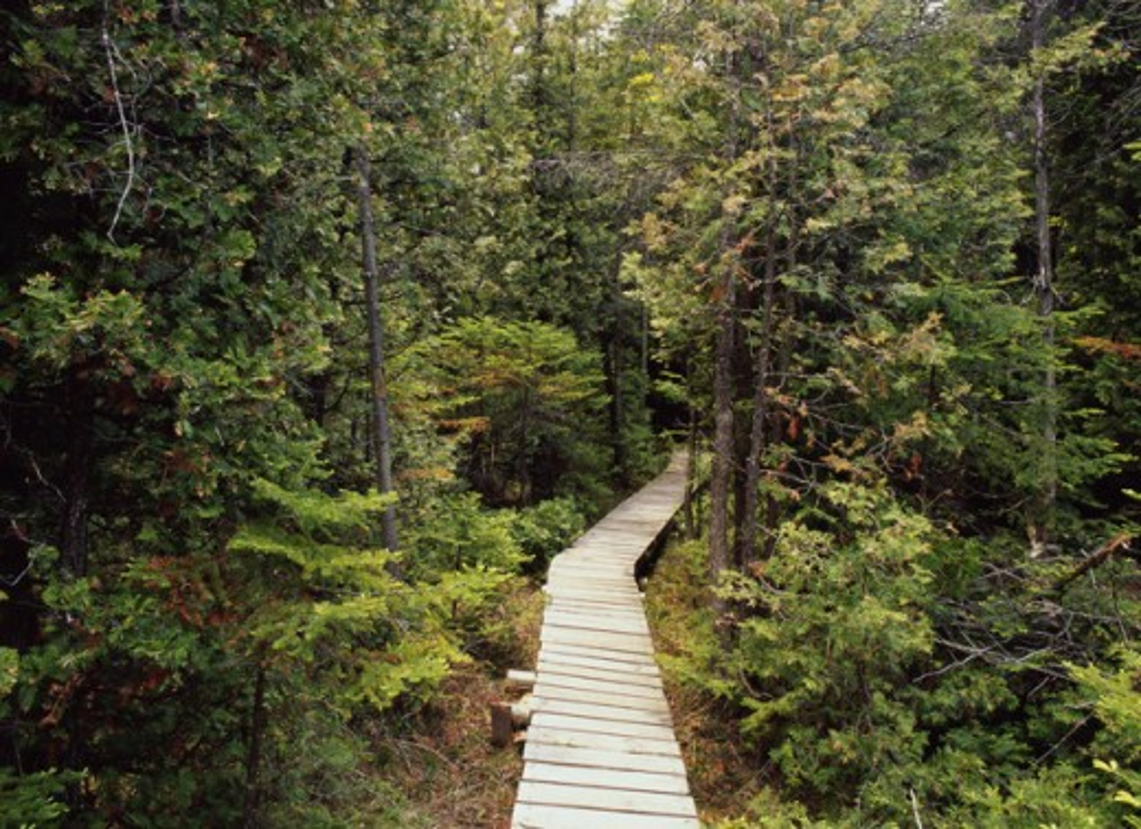 Petrel Point Nature Preserve Ontario Canada : Stock Photo
