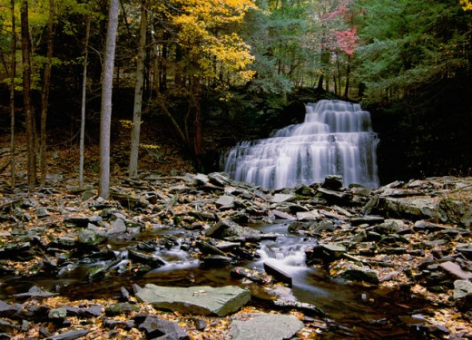 Waterfall in a forest, Savantine Falls, Delaware State Forest, Pennsylvania, USA : Stock Photo