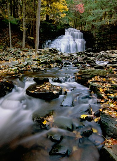 Stock Photo: 655-1889 Waterfall in a forest, Savantine Falls, Delaware State Forest, Pennsylvania, USA
