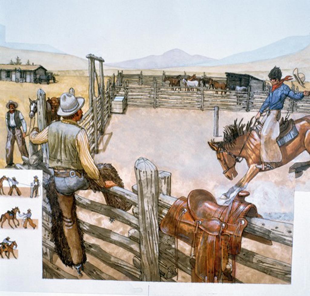 Cowboy riding a horse : Stock Photo