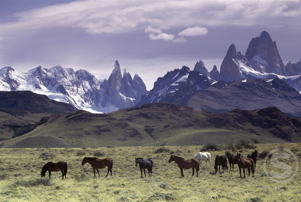 Stock Photo: 805-7177 Andes Mountains
