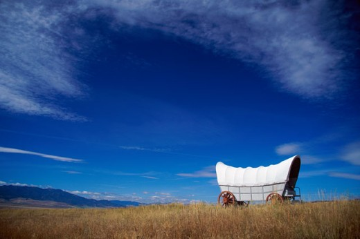 Stock Photo: 805-7536 Side profile of a covered wagon in a field, Oregon, USA