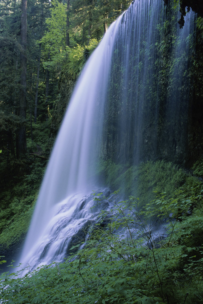 North Middle Falls, Silver Falls State Park, Oregon, USA : Stock Photo