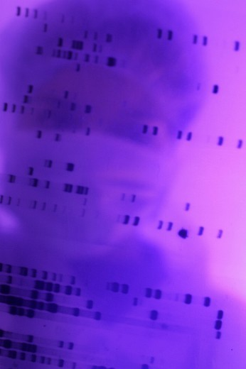 Stock Photo: 824-109819 GENETICS RESEARCH