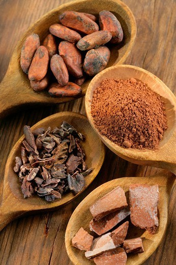 COCOA. COCOA Illustration of the steps in the production of chocolate. Cocoa beans, crushed fava beans, pieces of flat cakes and cocoa in powder. : Stock Photo