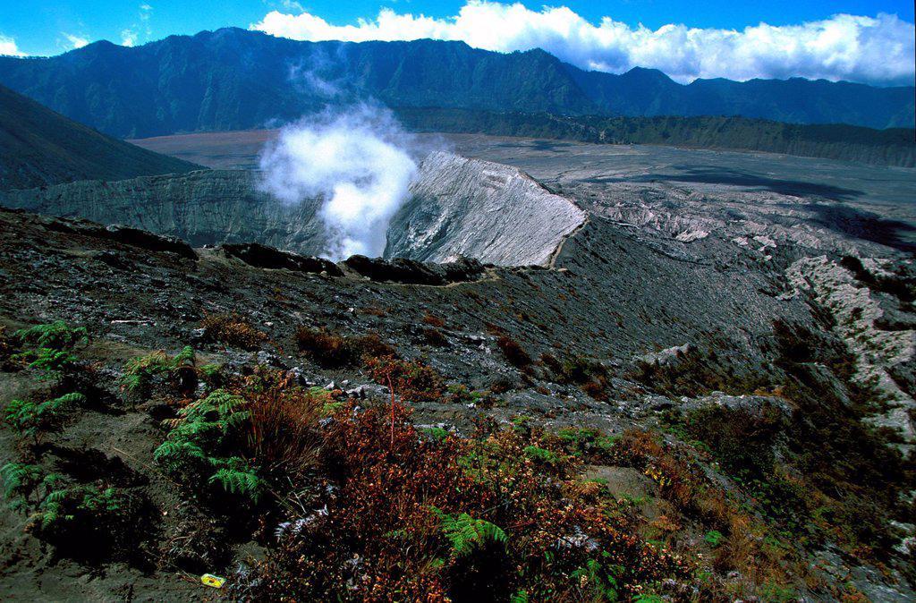 JAVA, INDONESIA. Caldeira and Bromo 2.329 m & Semeru 3.676 m volcanoes on Java. : Stock Photo