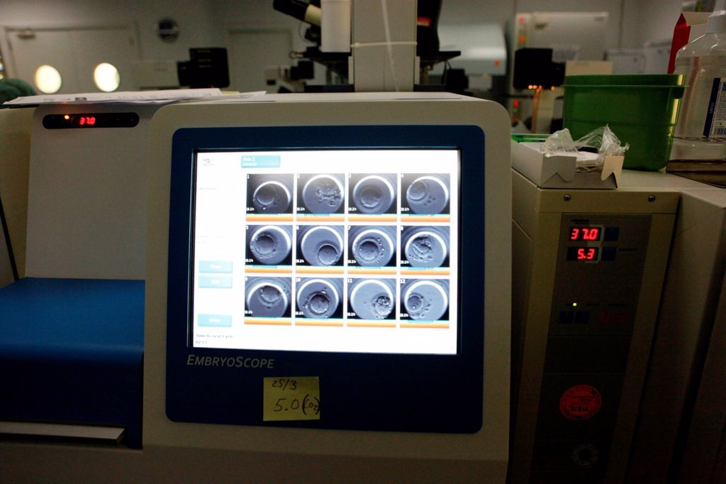 Stock Photo: 824-13473 IVF. Reportage in the IVI Clinic in Valencia, Spain. The embryoscope films the cellular divisions of the embryo.