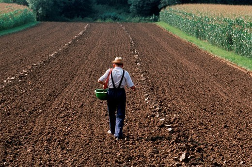 Stock Photo: 824-15512 FIELDS. FIELDS Worldwide distribution except for United Kingdom and Germany.