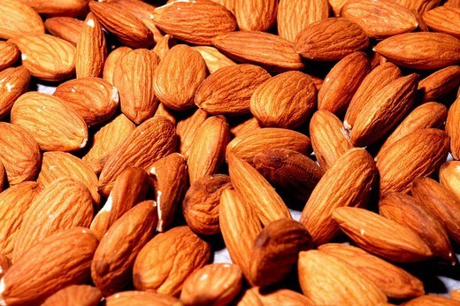 Stock Photo: 824-17343 ALMOND. ALMOND Worldwide distribution except for South Africa