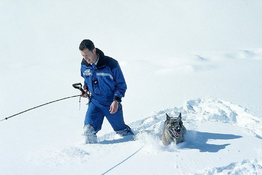 EMERGENCY AID WORKER. EMERGENCY AID WORKER Photo essay. Rescue in mountains. Police with avalanche dog. : Stock Photo