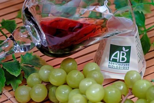 ORGANIC FOOD. ORGANIC FOOD Organic wine. : Stock Photo