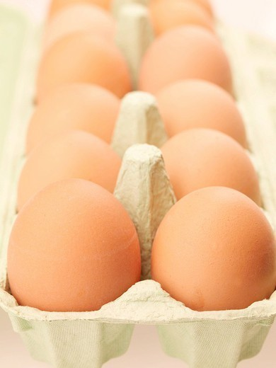 EGG. EGG Worldwide distribution except for South Africa : Stock Photo