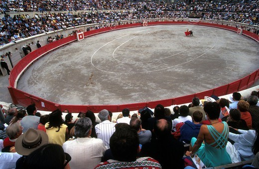BULL FIGHT. BULL FIGHT Arenas in Nîmes, France. : Stock Photo