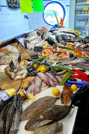 Stock Photo: 824-37446 FISH SHOP