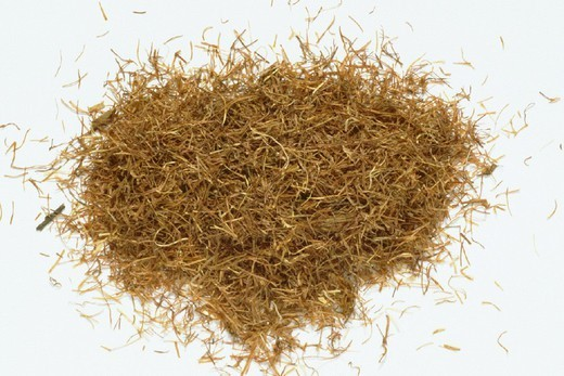 Stock Photo: 824-40118 CORN. CORN Stigmata maidis, commonly called cornsilk. Dried corn pistils.