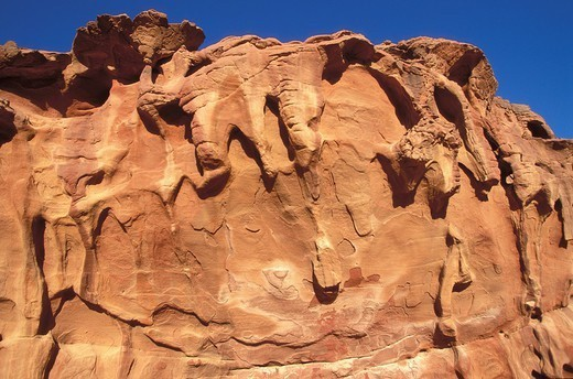 SANDSTONE EROSION. Eroded sandstone in the Wadi Rum desert, in Jordan. : Stock Photo