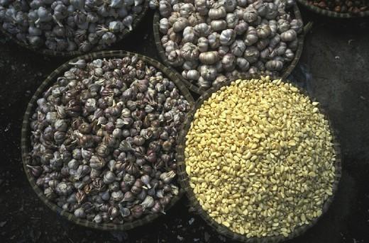 GARLIC. GARLIC Garlic. : Stock Photo