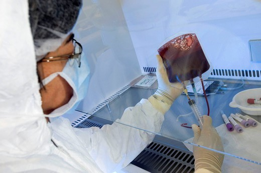 Stock Photo: 824-55103 CORD BLOOD ANALYSIS. Photo essay at the French blood bank, Bordeaux, France. Laboratory of stem cell therapy. Quality control , analyses of the placental blood.