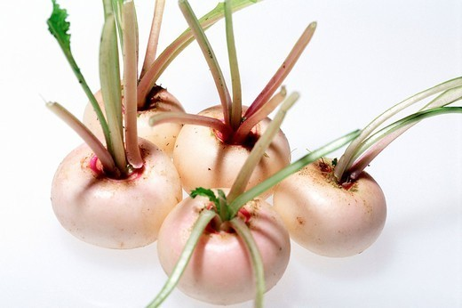 Stock Photo: 824-57474 TURNIP. TURNIP Worldwide distribution except for South Africa Baby turnips.