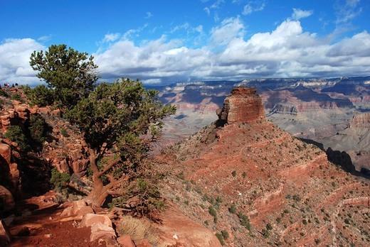 Stock Photo: 824-59984 ARIZONA, USA. ARIZONA, USA Grand Canyon, South Kaibab Trail.