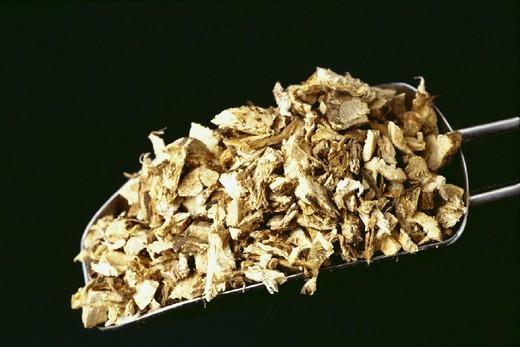 SPINY RESTHARROW. SPINY RESTHARROW Ononis spinosa. : Stock Photo