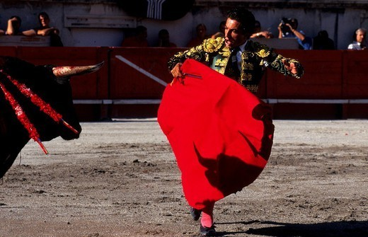Stock Photo: 824-64547 BULL FIGHT. BULL FIGHT The corrida in Nîmes, France.