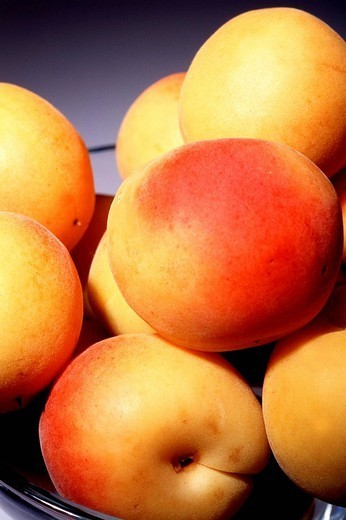 APRICOT. APRICOT Worldwide distribution except for South Africa : Stock Photo