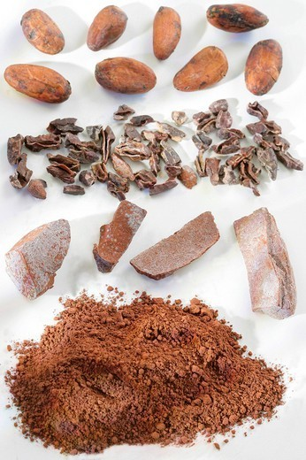 COCOA. COCOA Cocoa beans, crushed fava beans, pieces of flat cakes and cocoa in powder. : Stock Photo
