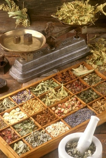 HERBALIST´S SHOP. HERBALIST´S SHOP Up on the left :  eucalyptus. On the balance :lime. In the mortar : vervain. Different kind of medicinal plantes : lavender, lim tree sapwood, sage, cherry stalk, lime, orange blossom. : Stock Photo
