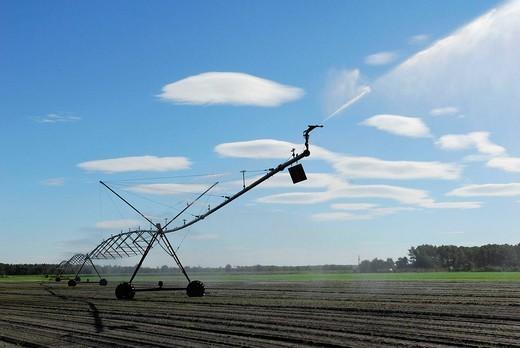 IRRIGATION. IRRIGATION Irrigation in les Landes, France. : Stock Photo