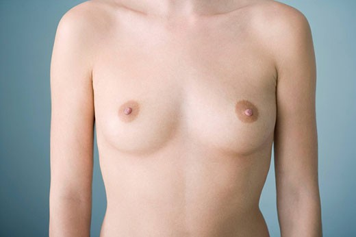 BREAST Model. : Stock Photo