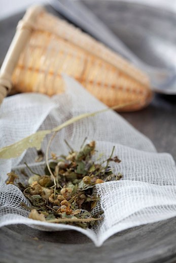 HERBAL MEDICINE : Stock Photo