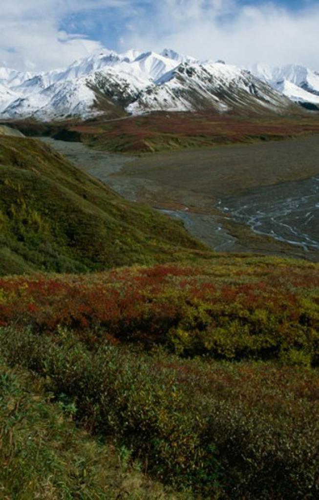 Mount Eielson Denali National Park Alaska USA : Stock Photo