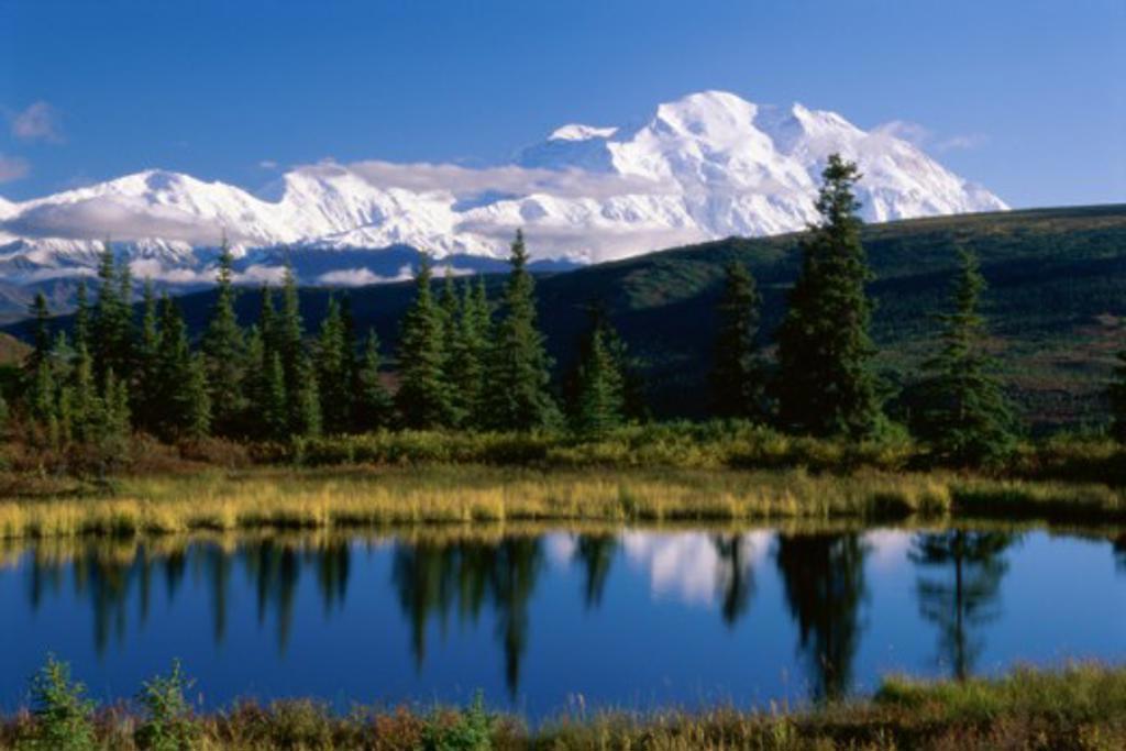 Panoramic view of a lake, Nugget Pond, Mount McKinley, Denali National Park, Alaska, USA : Stock Photo