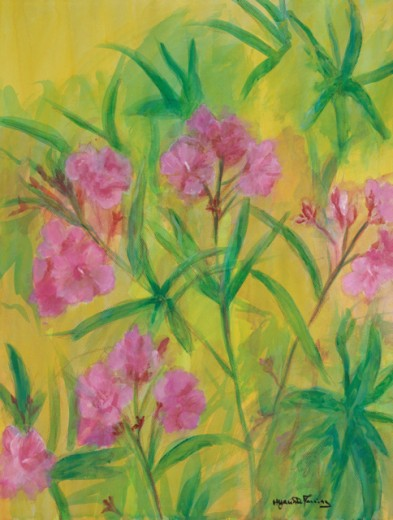 Stock Photo: 838-230 Oleanders