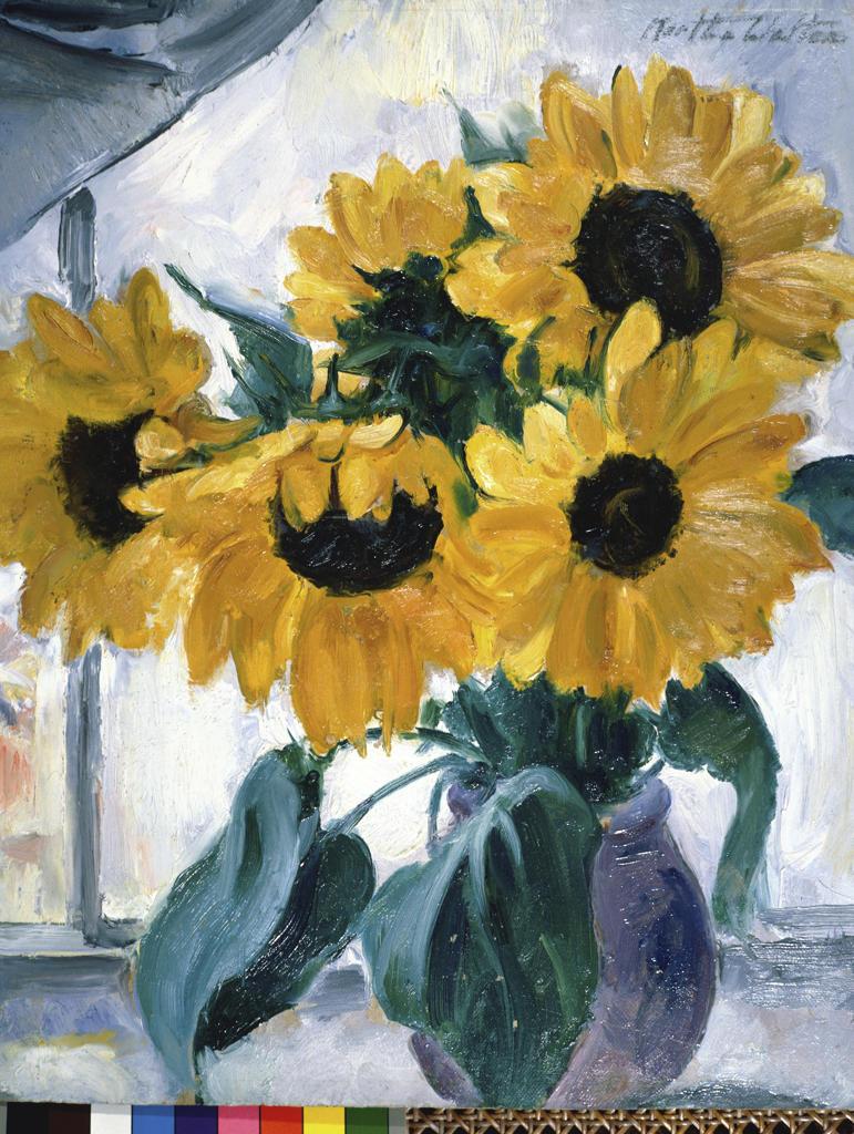 Stock Photo: 849-10089 Sunflowers by Martha Walter, oil on board, 1925, 1875-1976, USA, Pennsylvania, Philadelphia, David David Gallery