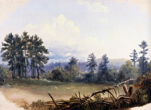 Stock Photo: 849-10180 Landscape by Russell Smith,  oil on canvas,  (1812-1896 ),  USA,  Pennsylvania,  Philadelphia,  David David Gallery