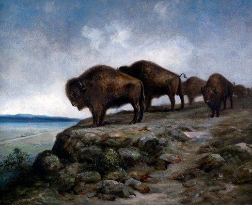 Stock Photo: 849-10470 Bisons at the edge of crag,  painted image