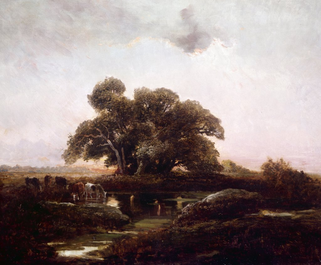 Stock Photo: 849-10940 Cows watering by stream by unknown French painter,  oil on canvas,  (19th century),  USA,  Pennsylvania,  Philadelphia,  David David Gallery,  Artist Unknown