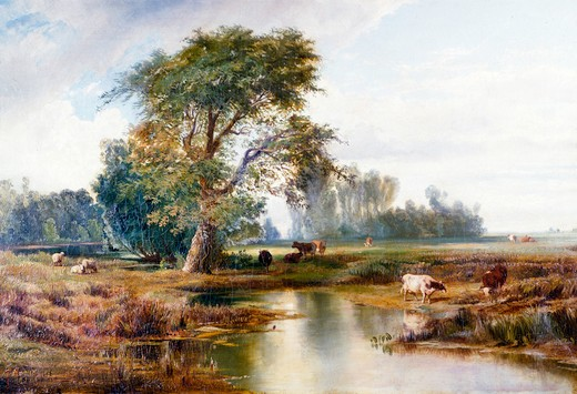 Stock Photo: 849-11135 Cattle Watering