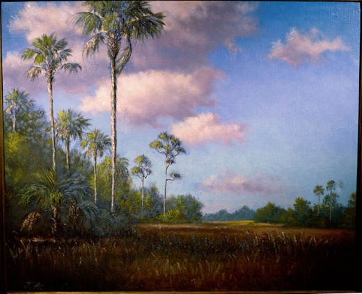 Stock Photo: 849-11373 Florida