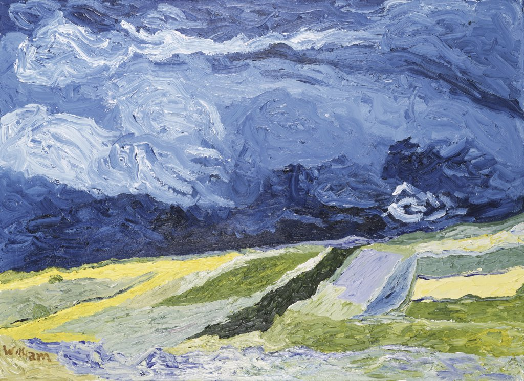 Field under Stormy Skies