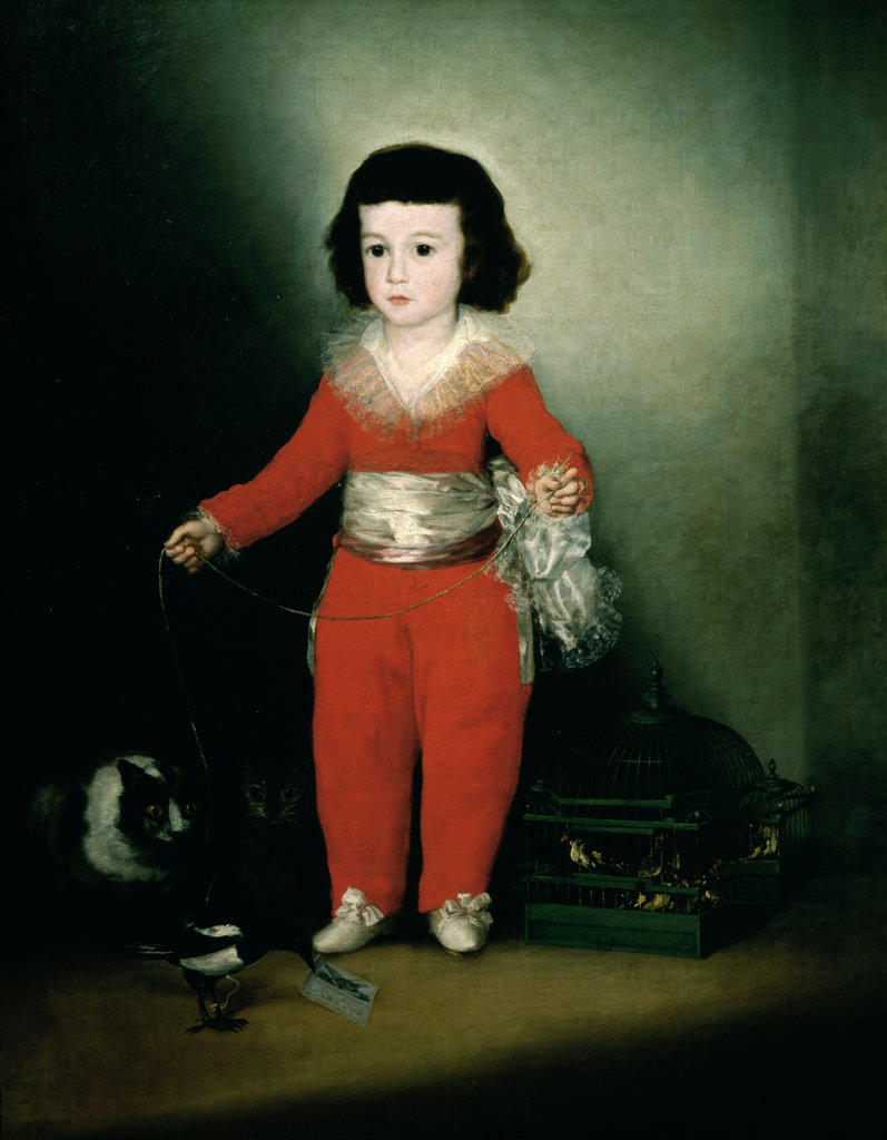 Stock Photo: 862-1060 Portrait of Don Manuel Osorio de Zuniga 1788 Francisco Lucientes y Goya (1746-1828/Spanish) Metropolitan Museum of Art, New York City