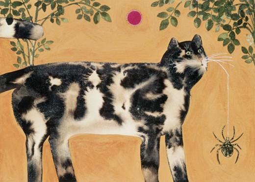 Cat With Spider Jillian Peccinotti Parkin Gallery : Stock Photo