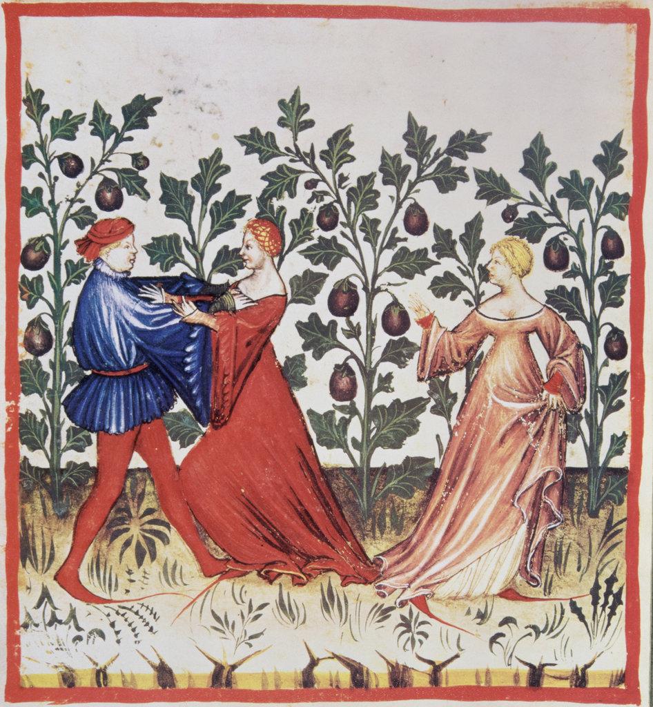 Aubergine: Ortus Sanitatis ca.1400 Artist Unknown Illuminated manuscript : Stock Photo