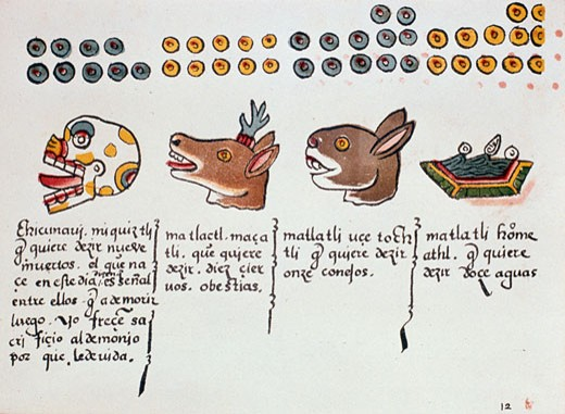 Aztec Days of Month (L to R) Death, Deer, Water, Dog, (from Florentine Codex), unknown artist, illustration : Stock Photo