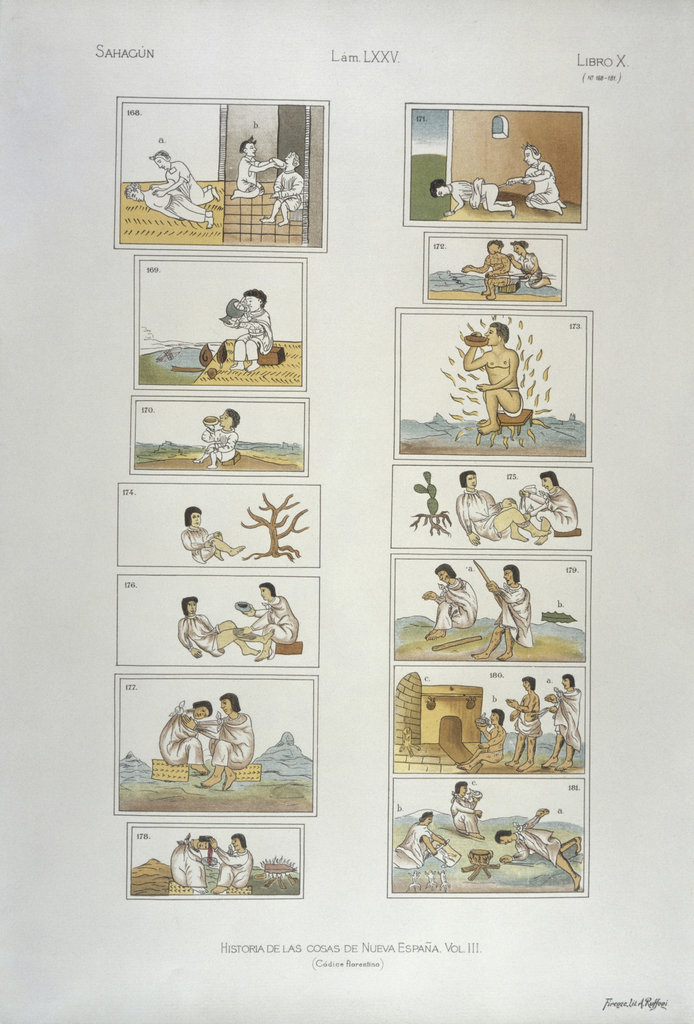 Stock Photo: 862-1816 Scenes from Florentine Codex:  Showing Aztec Medicine for Fever and Binding a Broken Leg