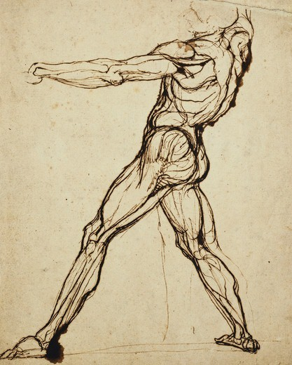 A Nude Throwing. Henry Fuseli (Johann Heinrich Fussli) (1741-1825). Pen and brown ink. 30.5 x 24.7cm. : Stock Photo